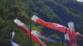 passarela : Carp streamers at Ryujin big bridge in Ibaraki daytime sunny
