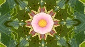 Abstract dynamic geometric kaleidoscope flower pattern background Stok Video