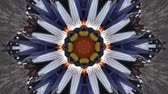 Vintage motion kaleidoscope background for club, concert, music video, event, fashion, show or animation Stok Video