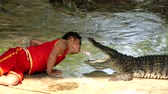 aligátor : NAKHON PATHOM, THAILAND - February    5 : Crocodile show at Samphran Crocodile Farm , it is one of the most impressive crocodile farm in the world at Nakhon Pathom , Thailand on February 5, 2019