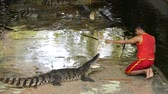 open mond : NAKHON PATHOM, THAILAND - February    5 : Crocodile show at Samphran Crocodile Farm , it is one of the most impressive crocodile farm in the world at Nakhon Pathom, Thailand on February 5, 2019