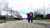ver��o : Two cute boys, walking together on a alley in the park with umbrella on a sunny rainy day