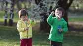 blooming : Two boys in the park, blowing and chasing soap bubbles