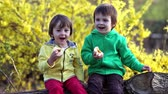florescente : Two boys in the park, eating apples and laughing