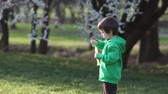 oynamak : Boy in the park, blowing and chasing soap bubbles Stok Video