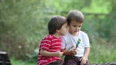 adorável : Adorable boys, licking lollipops outside on a sunny day
