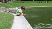 criança : Cute little boy feeding fishes in the pond in a park