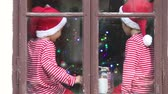 hat : Two children, boys, sitting on a window daytime, waiting impatiently for Christmas, colorful tree behind them