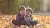 освещенный : Two boys, brothers, sitting on a lawn, autumn sunny afternoon day, eating american pancakes with chocolate Стоковые видеозаписи