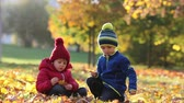 освещенный : Excited little boys, playing with leaves in the park, autumn time Стоковые видеозаписи