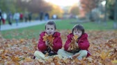 prazer : Two kids, boy brothers, playing with leaves in autumn park, sunny afternoon