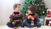 bolinhos : Two adorable children, boy brothers, eating cookies and drinking milk at home, Christmas decoration behind then, kids having fun. Christmas concept Vídeos