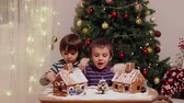 bolinhos : Two sweet boys, brothers, making gingerbread cookies house, decorating at home in front of the Christmas tree, child playing and enjoying, Christmas concept Vídeos