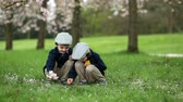 jardim de infância : Two adorable boys, reading a book in a spring blooming park