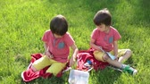bloco : Two boys, playing with construction blocks and eating fruits outdoors on a sunny spring day Stock Footage