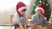 padeiro : Two cute boys with santa hat, preparing cookies at home, Christmas tree behind them Vídeos