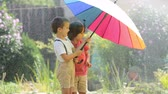 смех : Two adorable children, boy brothers, playing with colorful umbrella under sprinkling water in their backyard Стоковые видеозаписи