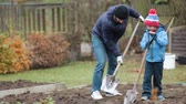ajuda : Father and son, working together in garden, autumntime, shoveling the soil for the winter Stock Footage