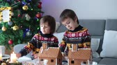 cream : Adorable preschool children, boy brothers, decorating gingerbread houses for Christmas at home, christmas tree behind them, advent candles on the table