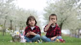игривый : Two children, boy brothers, eating chocolate bunnies and having fun with easter eggs in the park, beautiful spring blooming garden