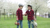 ovos : Two children, boy brothers, having fun with easter eggs in the park, beautiful spring blooming garden Vídeos
