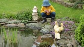 chovendo : Three little ducklings on a pond with flowers, little child playing with them Stock Footage