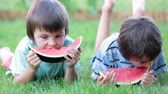 melão : Happy little children, boy brothers with watermelon in a garden, summertime Vídeos