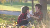 imaginação : Two children, boys playing with toy in the park, autumn time