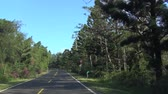 no people : driving through the country road Stock Footage
