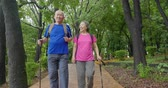 Happy asian Senior Couple On Vacation Enjoying Their Hiking Wideo