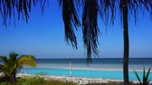 уборная : Holbox island beach in Caribbean sea of ??Mexico Стоковые видеозаписи