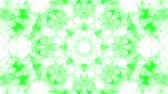 caleidoscopio : green animated abstract background. kaleidoscope. 3d render