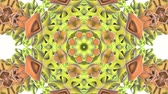 orbe : multicolored abstract animated patterns. kaleidoscope. 3d render