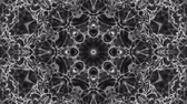 filtro : Black white kaleidoscope background. abstract. 3d render Archivo de Video