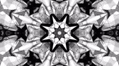 monocromático : black and white animated pattern. Abstract moving kaleidoscope. 3d rendering Stock Footage