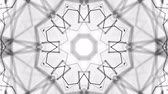 on line : black and white animated pattern. Abstract moving kaleidoscope. 3d rendering Stock Footage