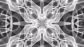 monocromo : black and white animated pattern. Abstract moving kaleidoscope. 3d rendering Archivo de Video