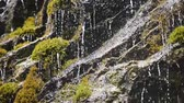 szwajcaria : Small waterfall streams in Swiss Alps