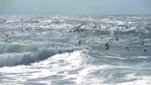 vodní sporty : Silhouettes of surfers on the Atlantic ocean waves near Capbreton, France