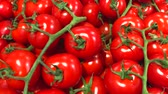 farmers market : Red Fresh Ripe Tomatoes selling in a supermarket. Horizontal 4k video Stock Footage