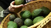 Close up of women hand buying avocado at local shop