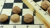 checkmate : Nuts and chessboards