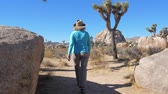 california drought : Hiking Women In The Mojave Desert, Among The Cacti, Joshua Trees And Stones Stock Footage