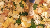 bez : Woman Legs In Boots Close Up Go Through The Green Lawn With Yellow Fallen Leaves