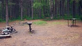 fogueira : Camping In The Pine Forest With A Fire Pit With Benches And Tables