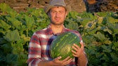 melão : Smiling Man Farmer Holding Organic Watermelon In Agriculture Field