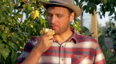 Male Farmer Eats A Ripe Pear On A Background Of Fruity Garden