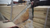 Medium plan, worker uses a saw, cuts a wooden board in half, sawdust woodworking equipment
