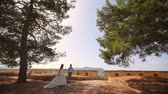 luxurious : Wedding photosession of the newlyweds in Greece.