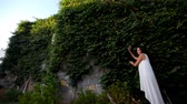 hera : beautiful fence of green ivy leaves and young girl near it.